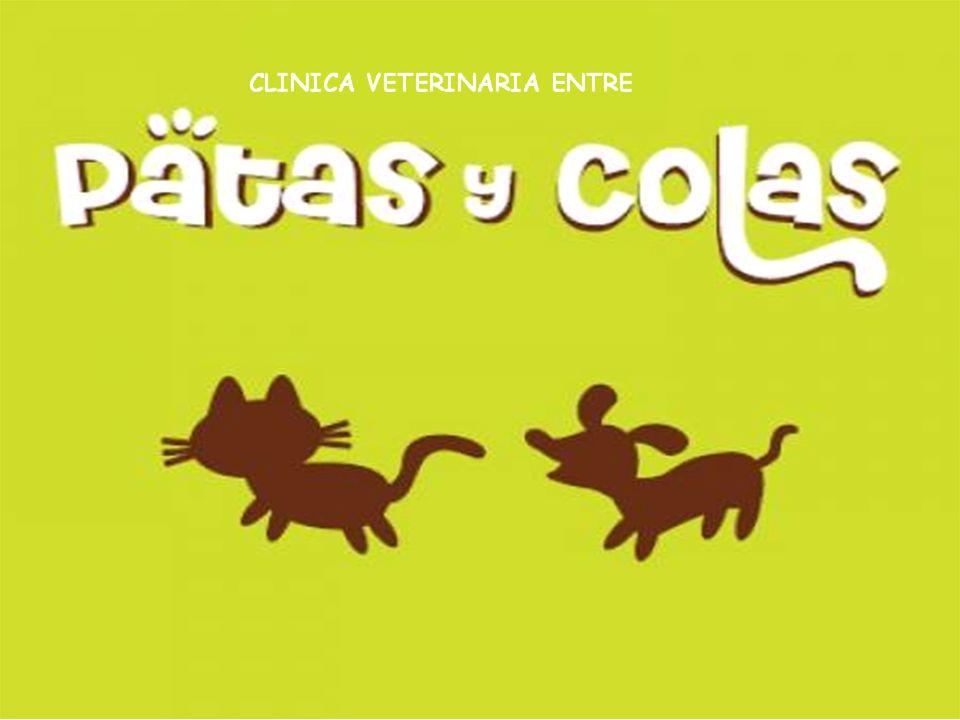 Clínica Veterinaria Patas y Colas Quienes somos.