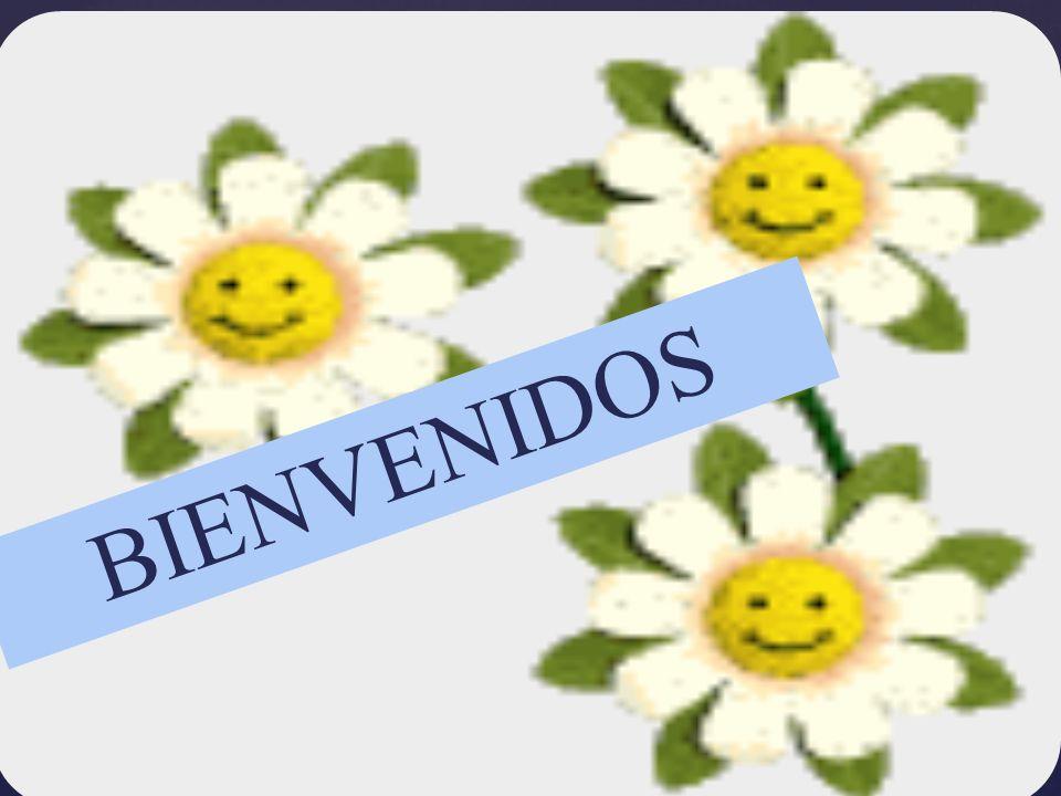 { BIENVENIDOS
