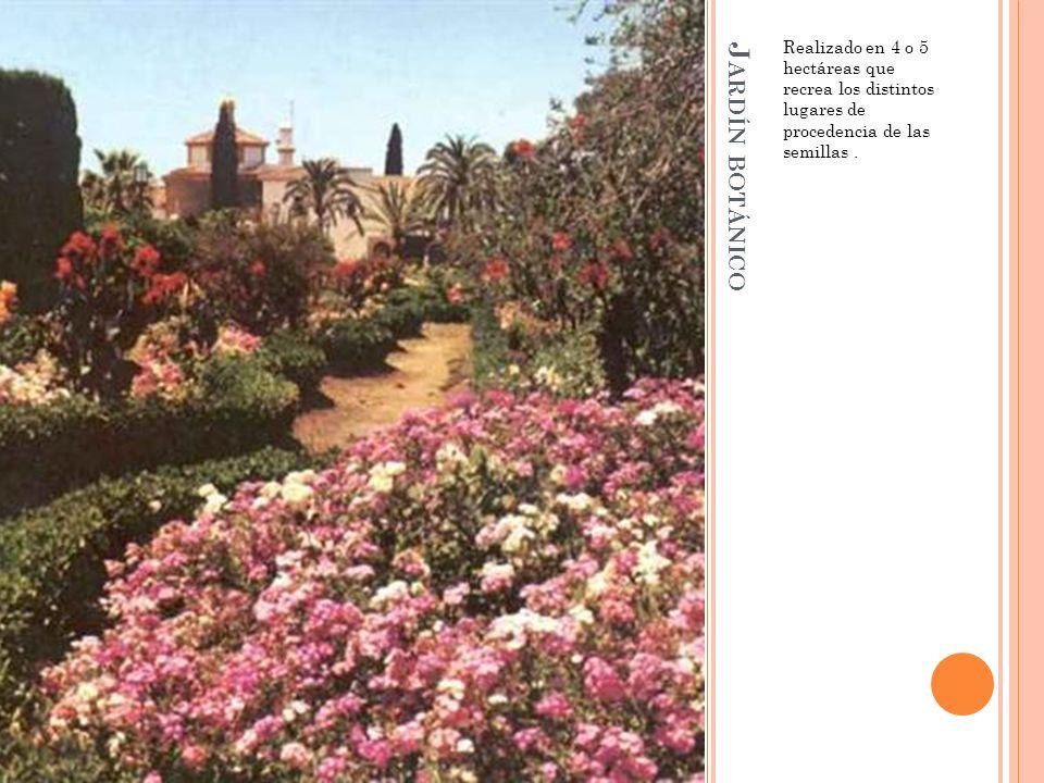 J ARDÍN BOTÁNICO Realizado en 4 o 5 hectáreas que recrea los distintos lugares de procedencia de las semillas.