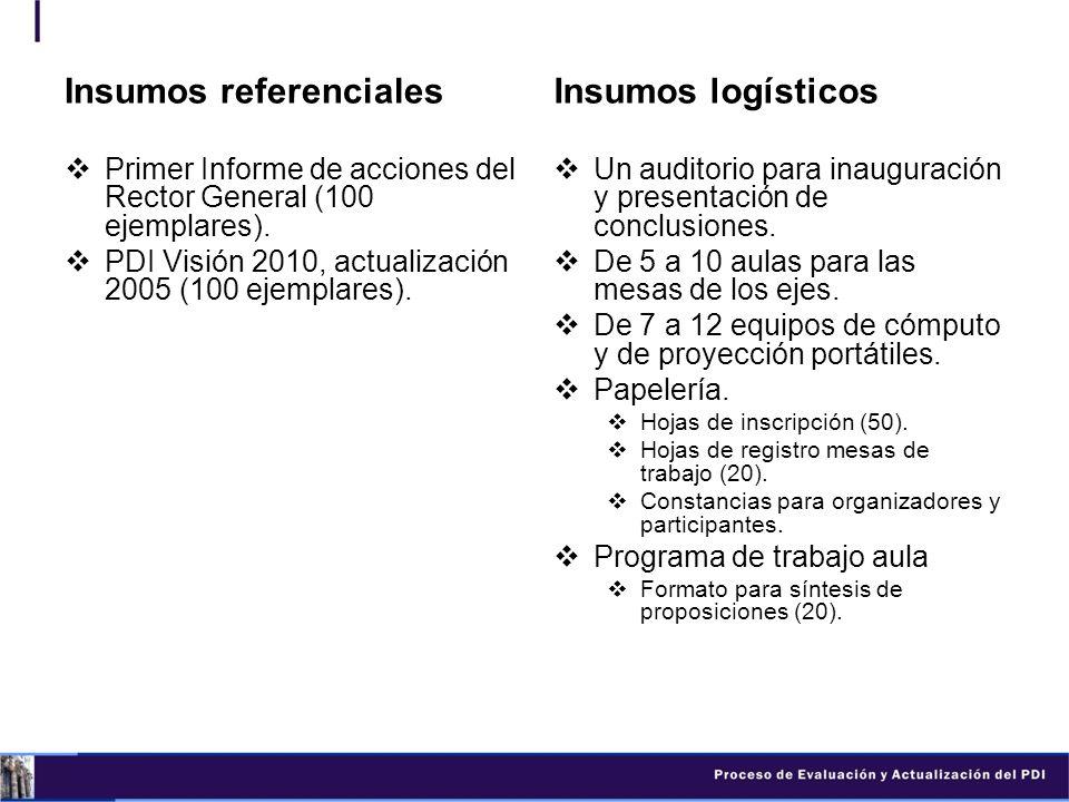 Insumos referenciales Primer Informe de acciones del Rector General (100 ejemplares). PDI Visión 2010, actualización 2005 (100 ejemplares). Insumos lo