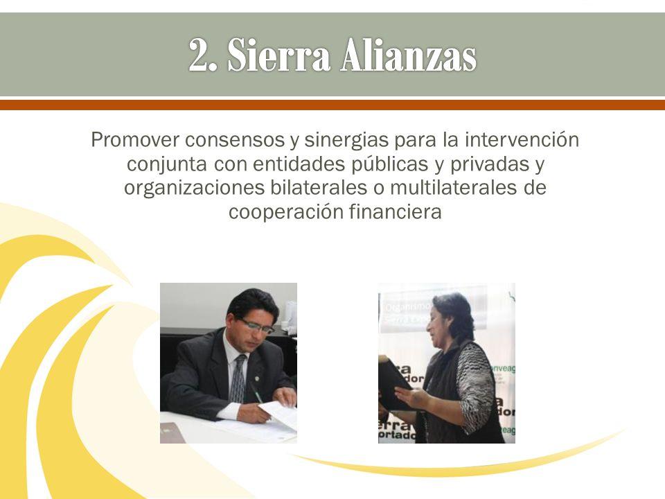 Promover consensos y sinergias para la intervención conjunta con entidades públicas y privadas y organizaciones bilaterales o multilaterales de cooper