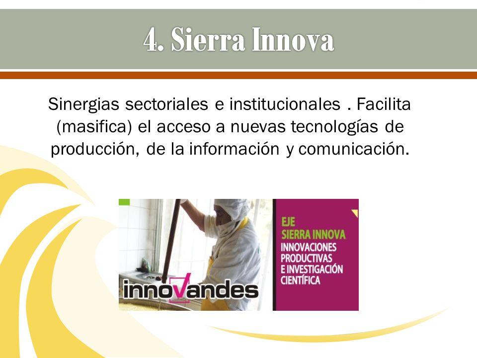 Sinergias sectoriales e institucionales. Facilita (masifica) el acceso a nuevas tecnologías de producción, de la información y comunicación.
