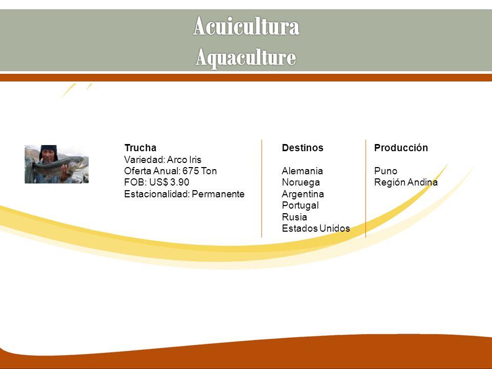 Trucha Variedad: Arco Iris Oferta Anual: 675 Ton FOB: US$ 3.90 Estacionalidad: Permanente Destinos Alemania Noruega Argentina Portugal Rusia Estados U
