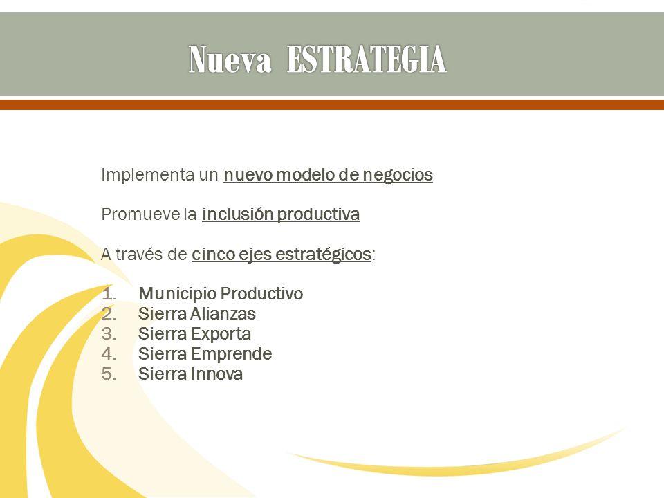 Implementa un nuevo modelo de negocios Promueve la inclusión productiva A través de cinco ejes estratégicos: 1.Municipio Productivo 2.Sierra Alianzas