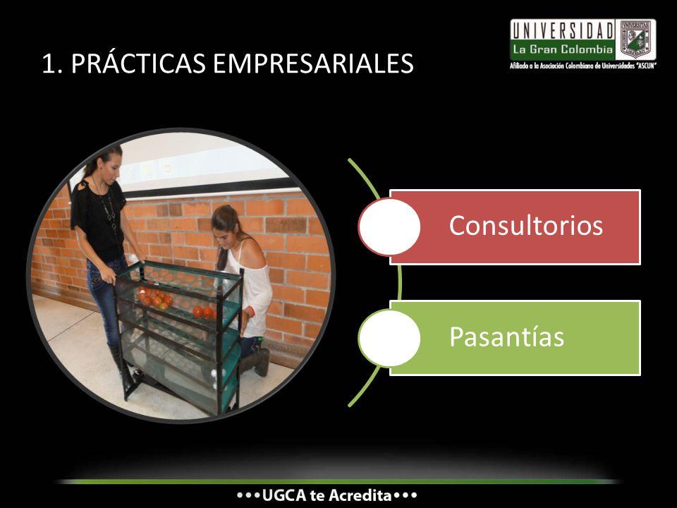 1. PRÁCTICAS EMPRESARIALES Consultorios Pasantías