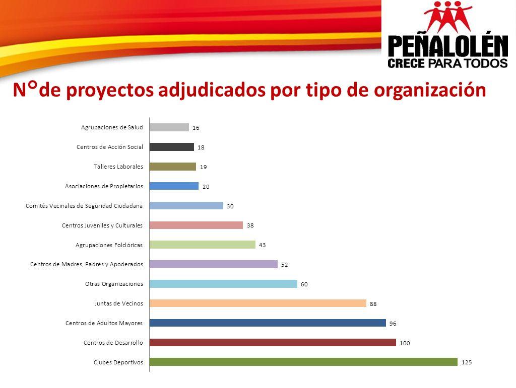 N°de proyectos adjudicados por tipo de organización