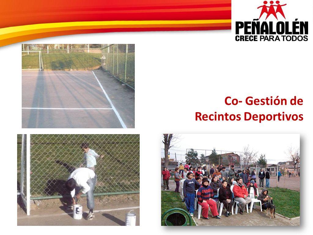 Co- Gestión de Recintos Deportivos