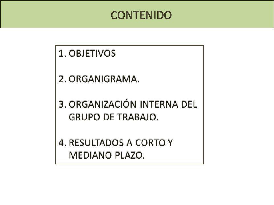 1.OBJETIVOS 2.ORGANIGRAMA. 3.ORGANIZACIÓN INTERNA DEL GRUPO DE TRABAJO. 4.RESULTADOS A CORTO Y MEDIANO PLAZO.