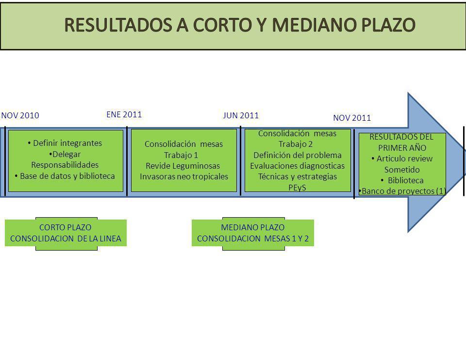 ENE 2011 JUN 2011NOV 2010 Definir integrantes Delegar Responsabilidades Base de datos y biblioteca CORTO PLAZO CONSOLIDACION DE LA LINEA NOV 2011 Cons