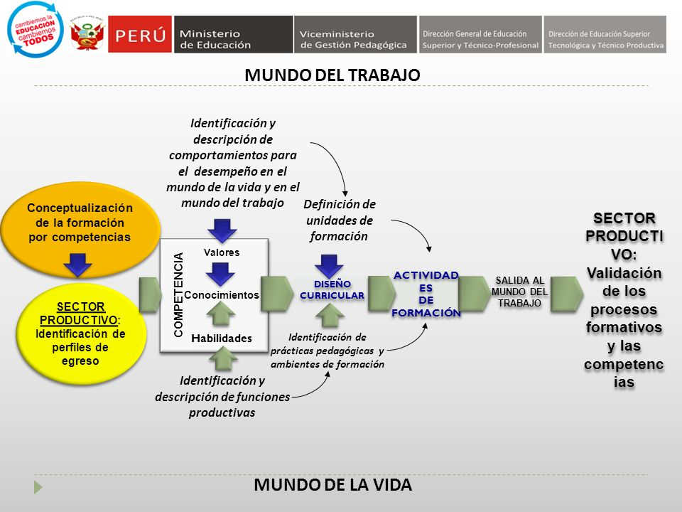 MUNDO DEL TRABAJO MUNDO DE LA VIDA Conceptualización de la formación por competencias SECTOR PRODUCTI VO: Validación de los procesos formativos y las