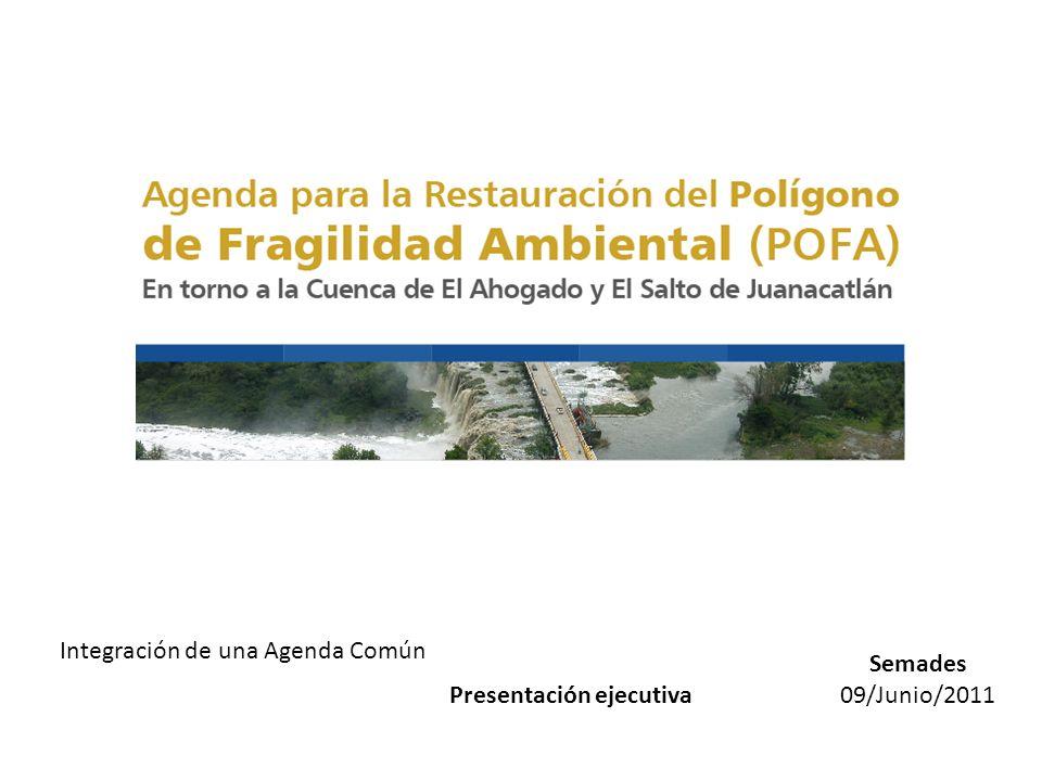 Semades 09/Junio/2011 Integración de una Agenda Común Presentación ejecutiva