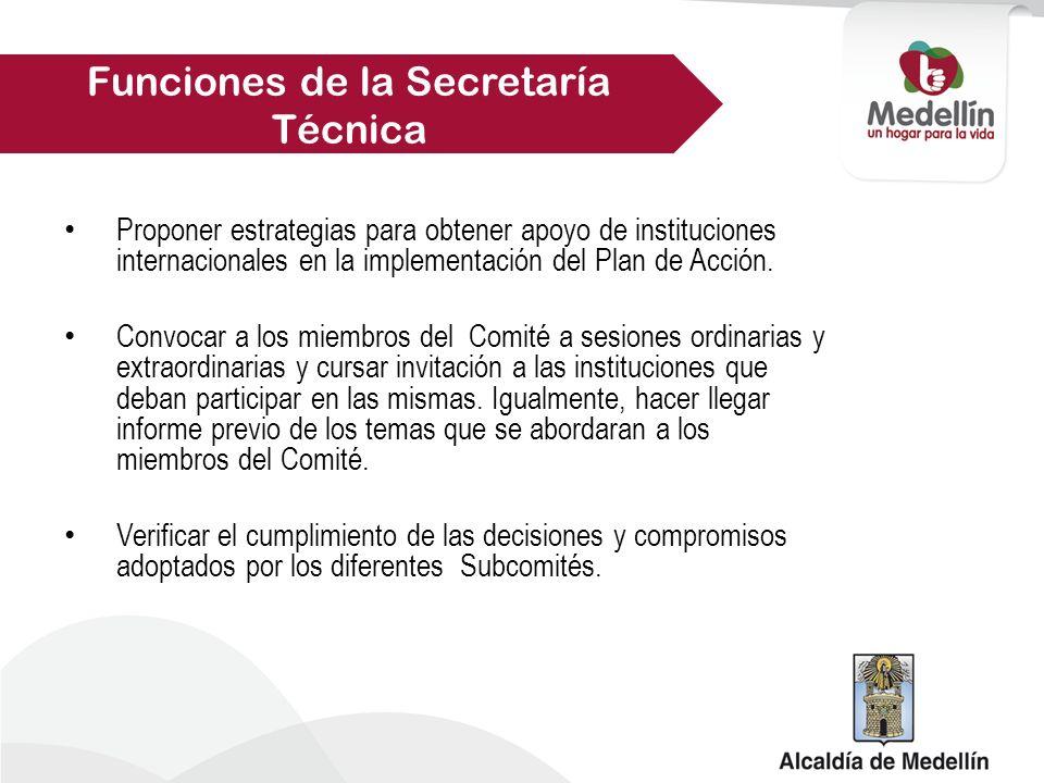 Proponer estrategias para obtener apoyo de instituciones internacionales en la implementación del Plan de Acción.