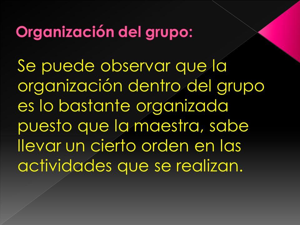 Se puede observar que la organización dentro del grupo es lo bastante organizada puesto que la maestra, sabe llevar un cierto orden en las actividades