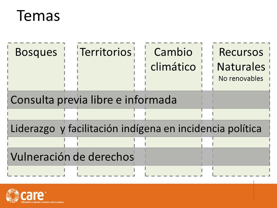 Temas TerritoriosBosquesRecursos Naturales No renovables Cambio climático Consulta previa libre e informada Liderazgo y facilitación indígena en incidencia política Vulneración de derechos