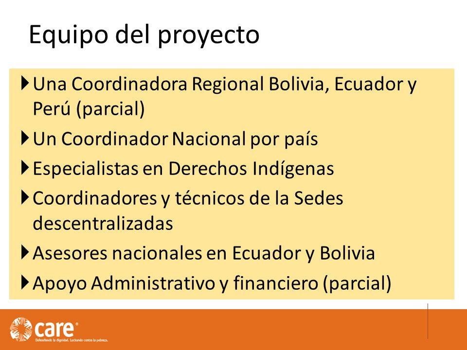 Una Coordinadora Regional Bolivia, Ecuador y Perú (parcial) Un Coordinador Nacional por país Especialistas en Derechos Indígenas Coordinadores y técnicos de la Sedes descentralizadas Asesores nacionales en Ecuador y Bolivia Apoyo Administrativo y financiero (parcial) Equipo del proyecto
