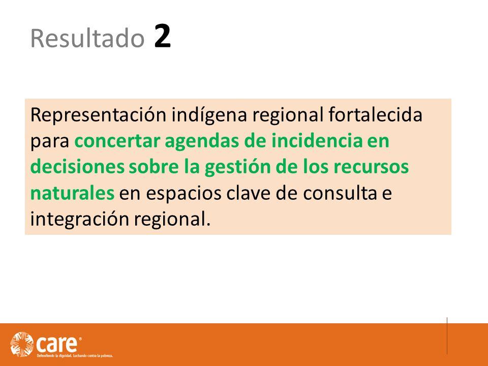 Representación indígena regional fortalecida para concertar agendas de incidencia en decisiones sobre la gestión de los recursos naturales en espacios clave de consulta e integración regional.