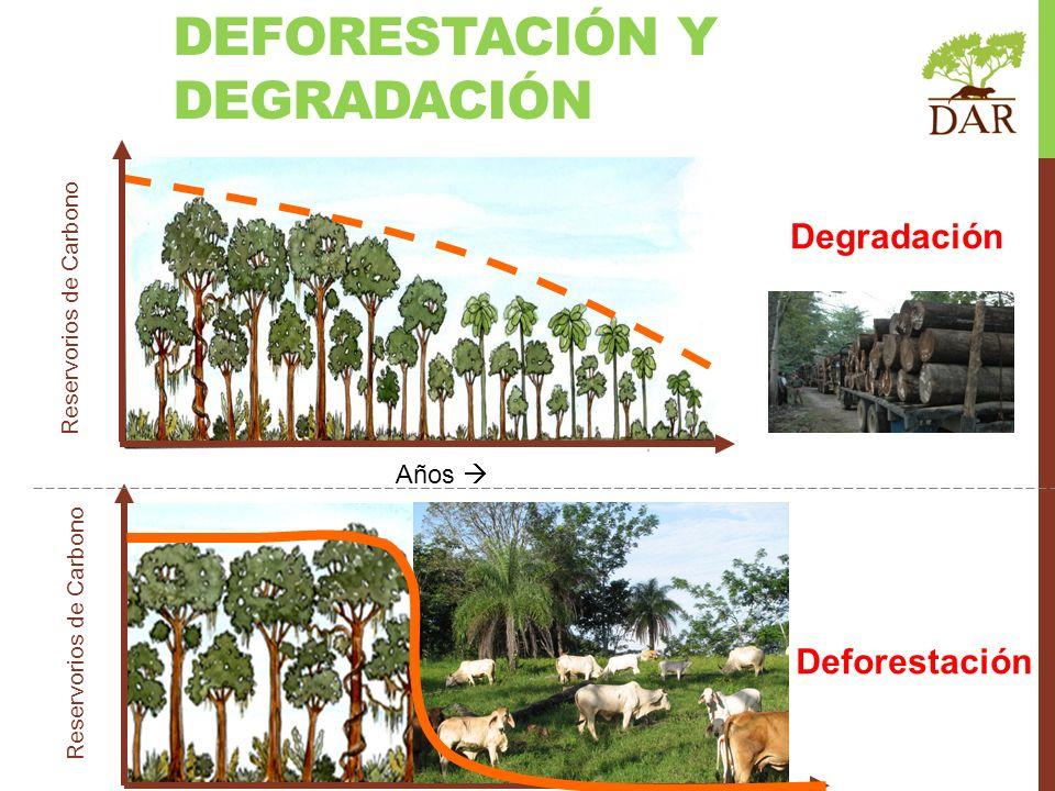 Años Degradación Deforestación Años Reservorios de Carbono DEFORESTACIÓN Y DEGRADACIÓN