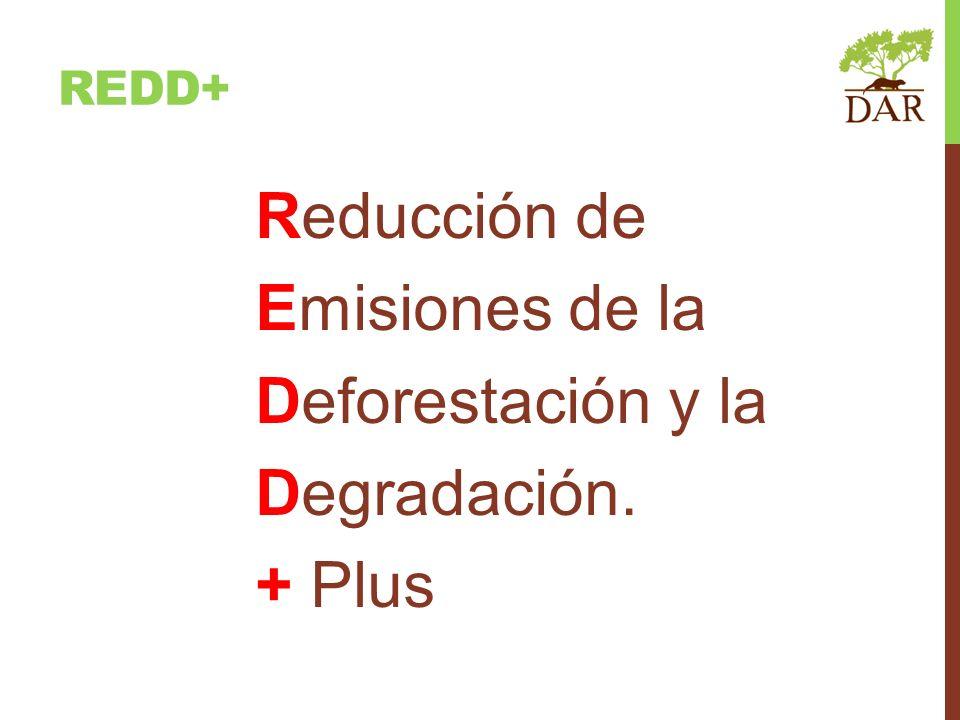 Reducción de Emisiones de la Deforestación y la Degradación. + Plus REDD+