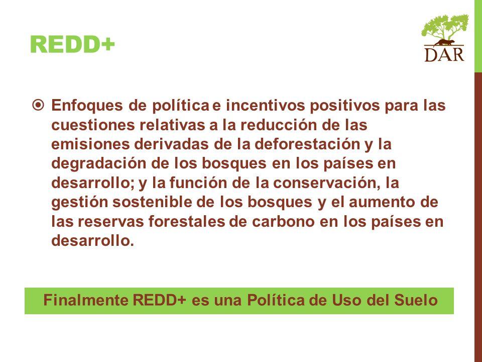 Enfoques de política e incentivos positivos para las cuestiones relativas a la reducción de las emisiones derivadas de la deforestación y la degradaci