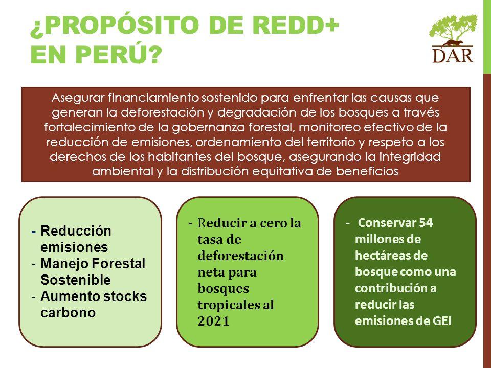 ¿PROPÓSITO DE REDD+ EN PERÚ? - Reducción emisiones -Manejo Forestal Sostenible -Aumento stocks carbono - Reducir a cero la tasa de deforestación neta