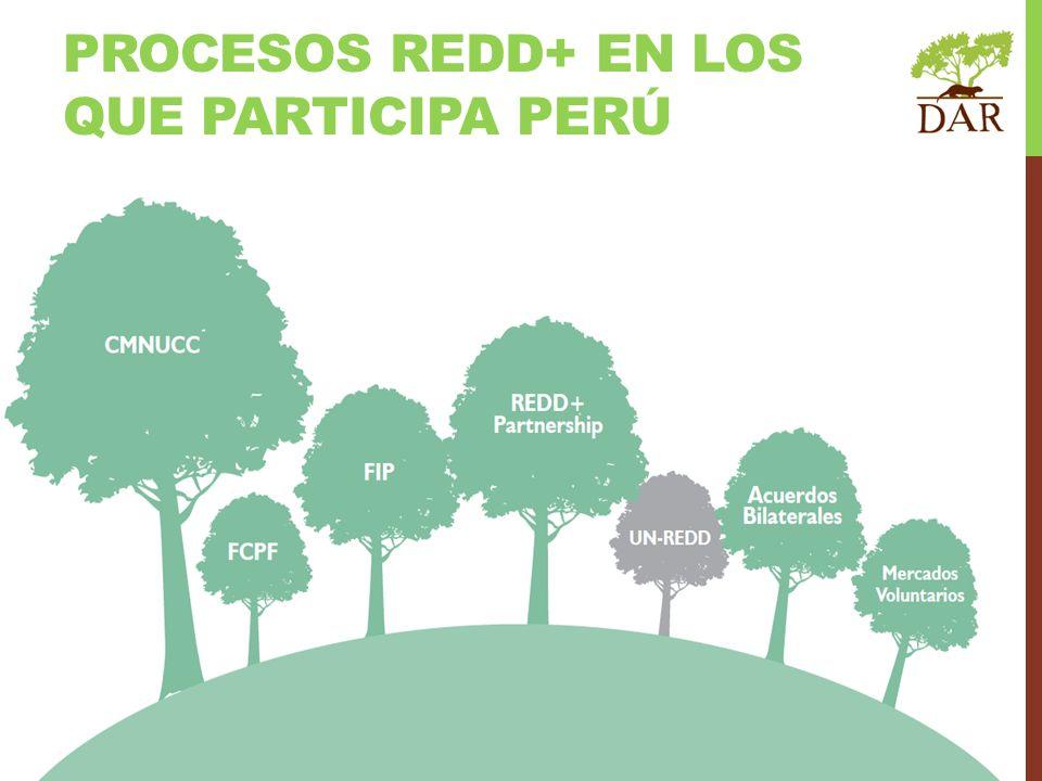 PROCESOS REDD+ EN LOS QUE PARTICIPA PERÚ