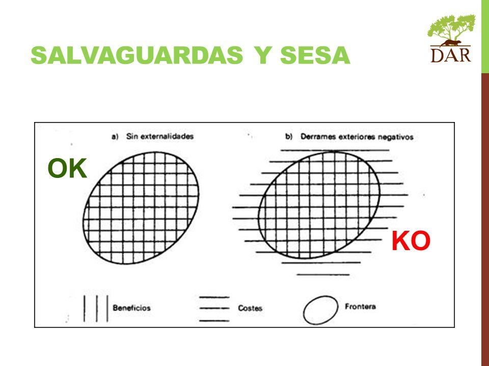 OK KO SALVAGUARDAS Y SESA