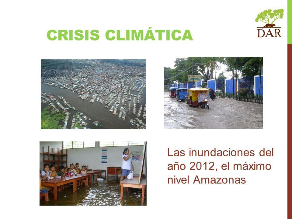 Las sequías de los años 2005 y 2010, las peores de las Amazonía CRISIS CLIMÁTICA