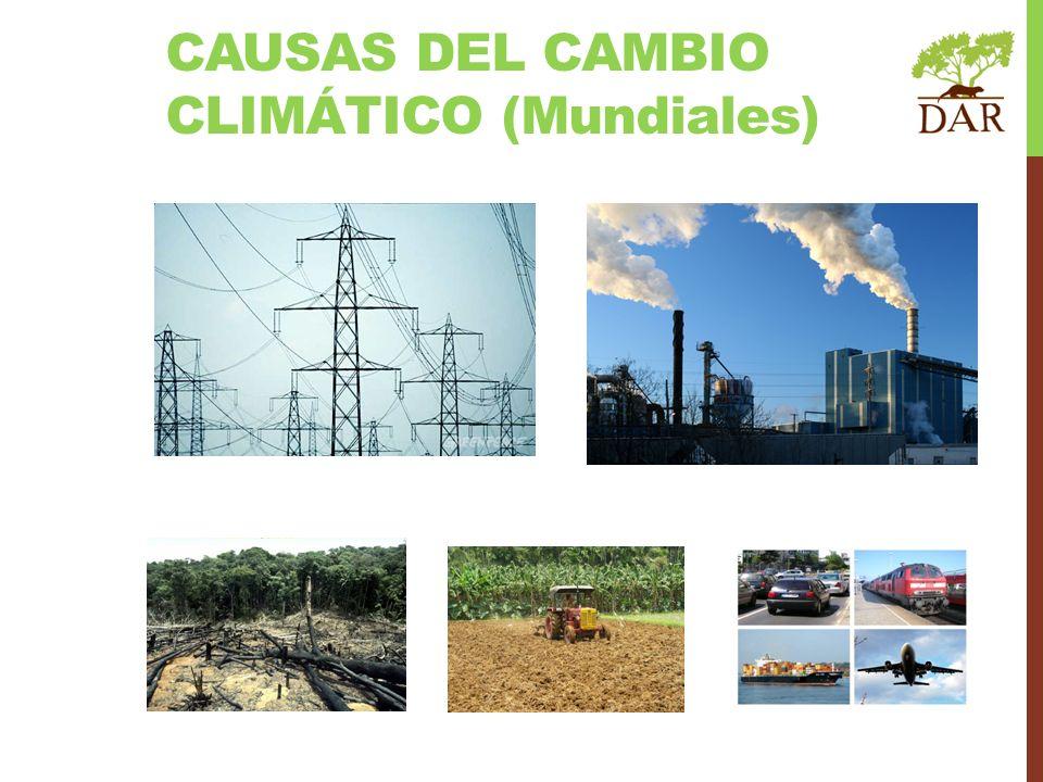 CAUSAS DEL CAMBIO CLIMÁTICO (Mundiales)