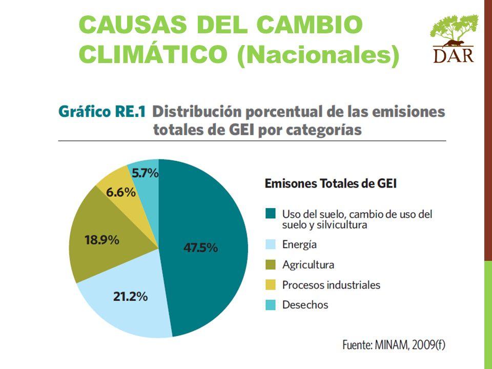 Programa Nacional de Conservación de Bosques para Mitigación del Cambio Climático.