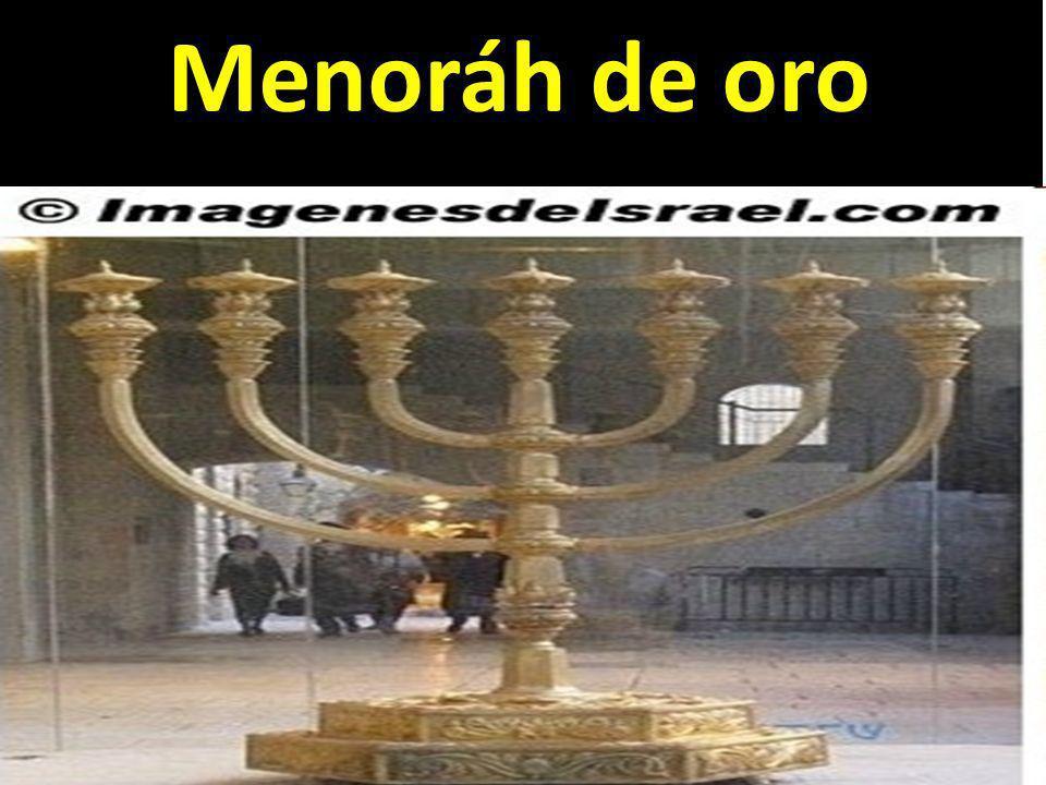 ¿CÓMO LO ENTERRÓ.Sabemos que los judíos distinguían dos clases de sepultura.