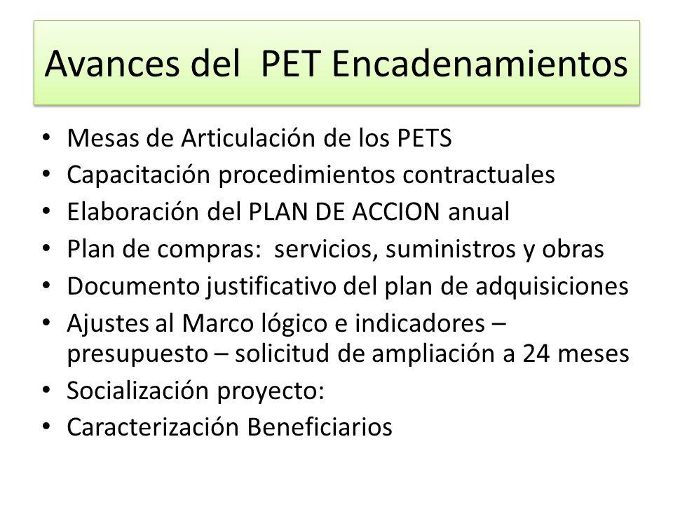 Avances del PET Encadenamientos Mesas de Articulación de los PETS Capacitación procedimientos contractuales Elaboración del PLAN DE ACCION anual Plan