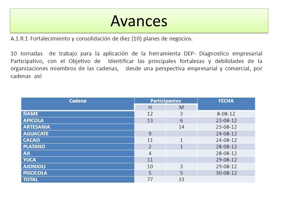 Avances CadenaParticipantesFECHA HM ÑAME1238-08-12 APICOLA13623-08-12 ARTESANIA 1423-08-12 AGUACATE9 24-08-12 CACAO11124-08-12 PLATANO2128-08-12 AJI4