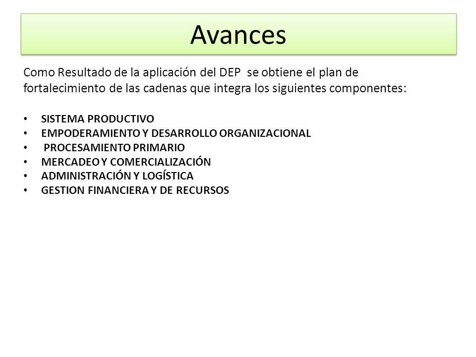 Como Resultado de la aplicación del DEP se obtiene el plan de fortalecimiento de las cadenas que integra los siguientes componentes: SISTEMA PRODUCTIV