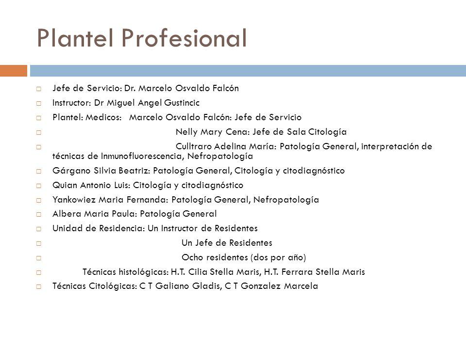 Plantel Profesional Jefe de Servicio: Dr. Marcelo Osvaldo Falcón Instructor: Dr Miguel Angel Gustincic Plantel: Medicos: Marcelo Osvaldo Falcón: Jefe