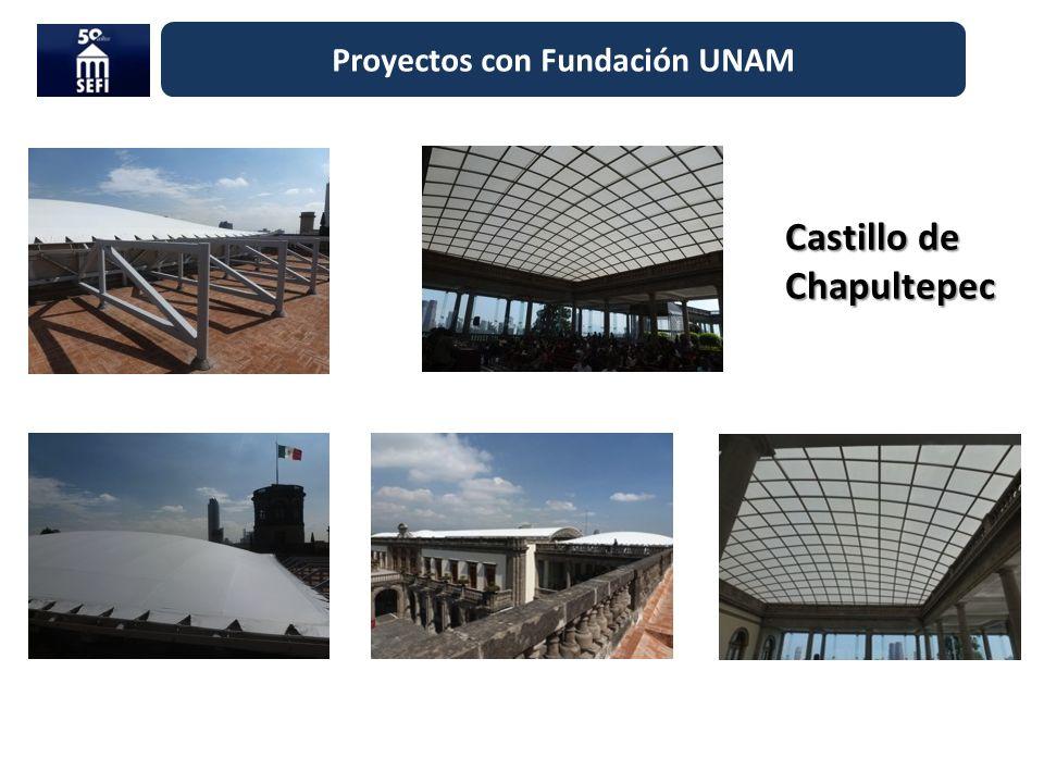 Proyectos con Fundación UNAM