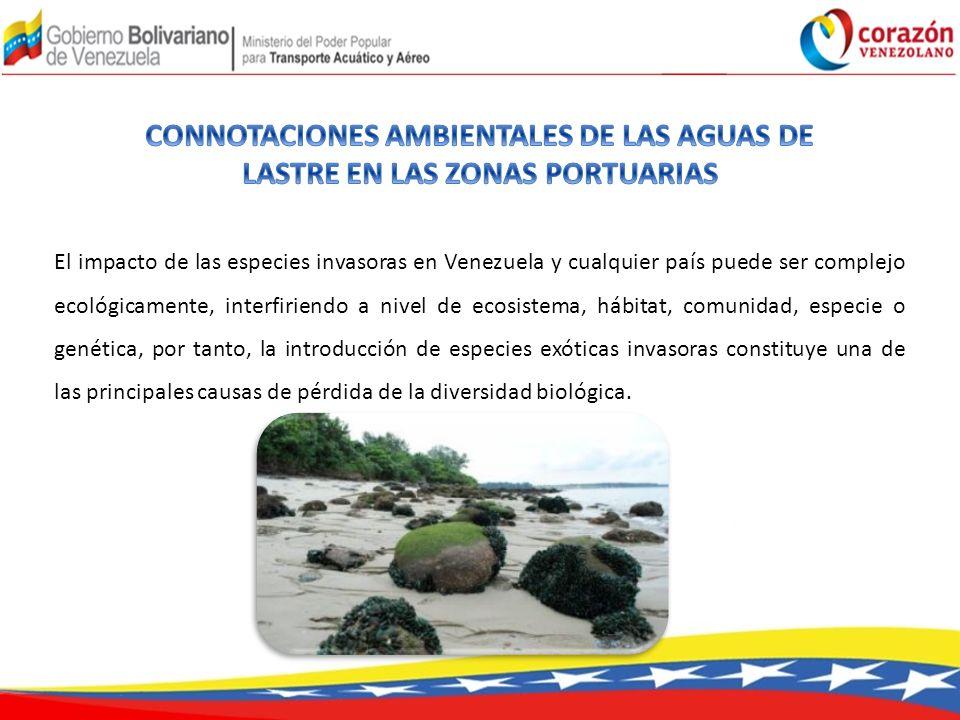 El impacto de las especies invasoras en Venezuela y cualquier país puede ser complejo ecológicamente, interfiriendo a nivel de ecosistema, hábitat, comunidad, especie o genética, por tanto, la introducción de especies exóticas invasoras constituye una de las principales causas de pérdida de la diversidad biológica.