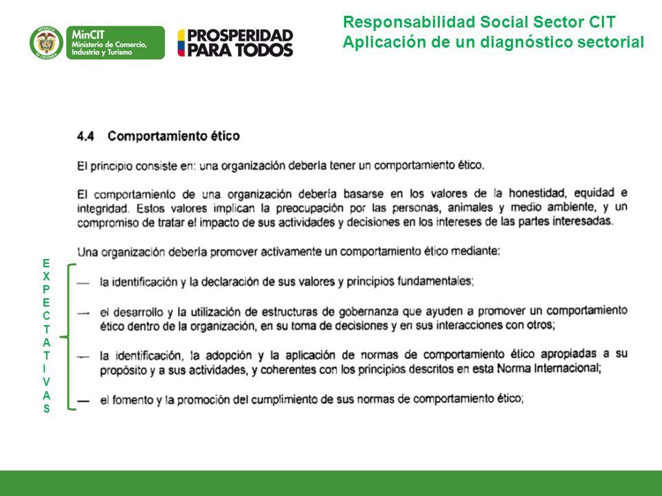 Responsabilidad Social Sector CIT Aplicación de un diagnóstico sectorial EXPECTATIVASEXPECTATIVAS