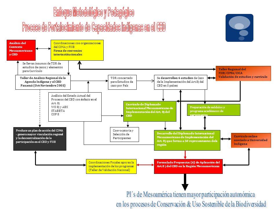 Preparación de módulos y programa académicos de participantes Convocatoria y Selección de Participantes Desarrollo del Diplomado Internacional Mesoame