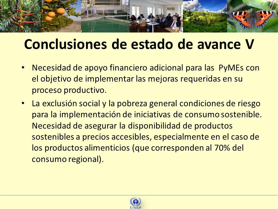 18 Necesidad de apoyo financiero adicional para las PyMEs con el objetivo de implementar las mejoras requeridas en su proceso productivo. La exclusión