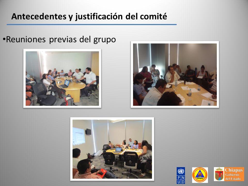 Antecedentes y justificación del comité Reuniones previas del grupo