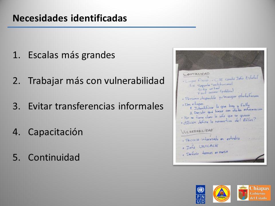 Necesidades identificadas 1.Escalas más grandes 2.Trabajar más con vulnerabilidad 3.Evitar transferencias informales 4.Capacitación 5.Continuidad