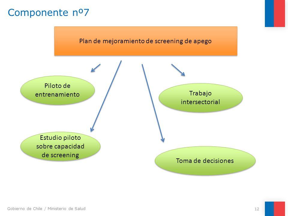 Gobierno de Chile / Ministerio de Salud Componente nº7 12 Plan de mejoramiento de screening de apego Estudio piloto sobre capacidad de screening Toma