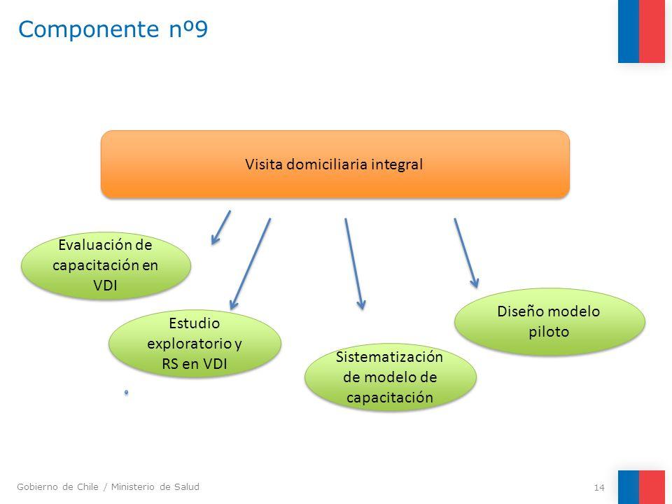 Gobierno de Chile / Ministerio de Salud Componente nº9 14 Visita domiciliaria integral Estudio exploratorio y RS en VDI Sistematización de modelo de c