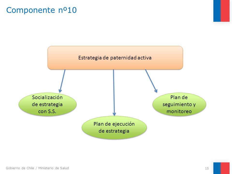 Gobierno de Chile / Ministerio de Salud Componente nº10 15 Estrategia de paternidad activa Socialización de estrategia con S.S. Plan de ejecución de e