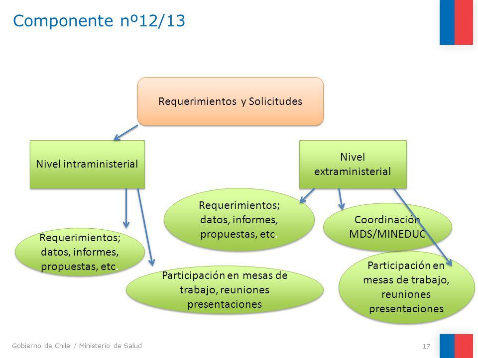 Gobierno de Chile / Ministerio de Salud Componente nº12/13 17 Requerimientos y Solicitudes Nivel intraministerial Nivel extraministerial Requerimiento