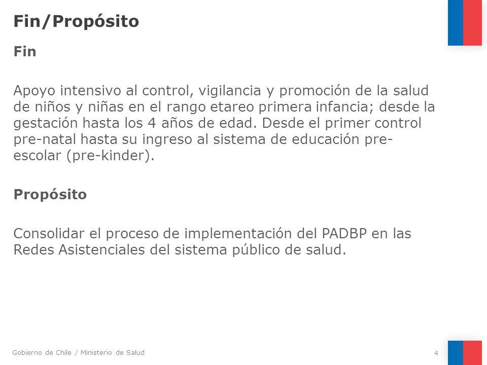 Gobierno de Chile / Ministerio de Salud Fin/Propósito Fin Apoyo intensivo al control, vigilancia y promoción de la salud de niños y niñas en el rango
