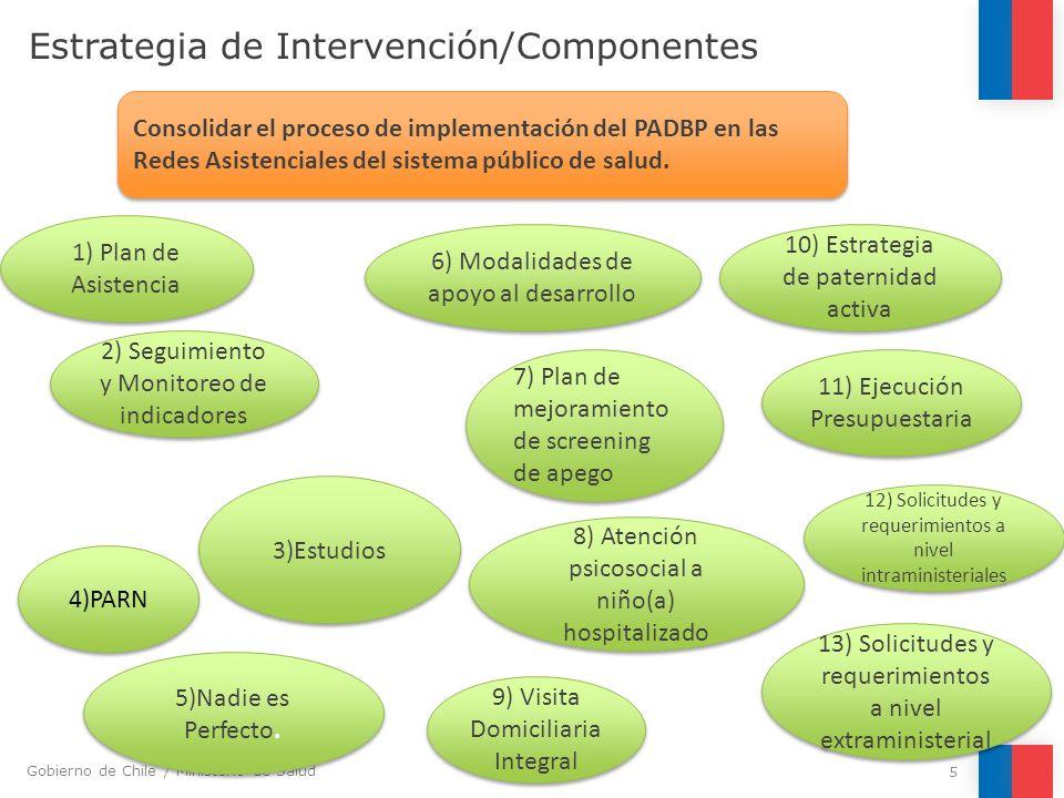 Gobierno de Chile / Ministerio de Salud Estrategia de Intervención/Componentes 5 Consolidar el proceso de implementación del PADBP en las Redes Asiste