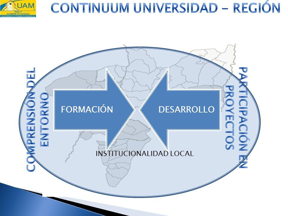 FORMACIÓNDESARROLLO INSTITUCIONALIDAD LOCAL