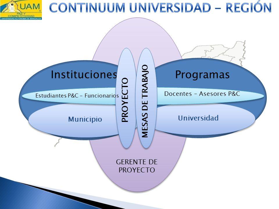 GERENTE DE PROYECTO Instituciones Municipio Programas Universidad PROYECTO MESAS DE TRABAJO Estudiantes P&C - Funcionarios Docentes – Asesores P&C
