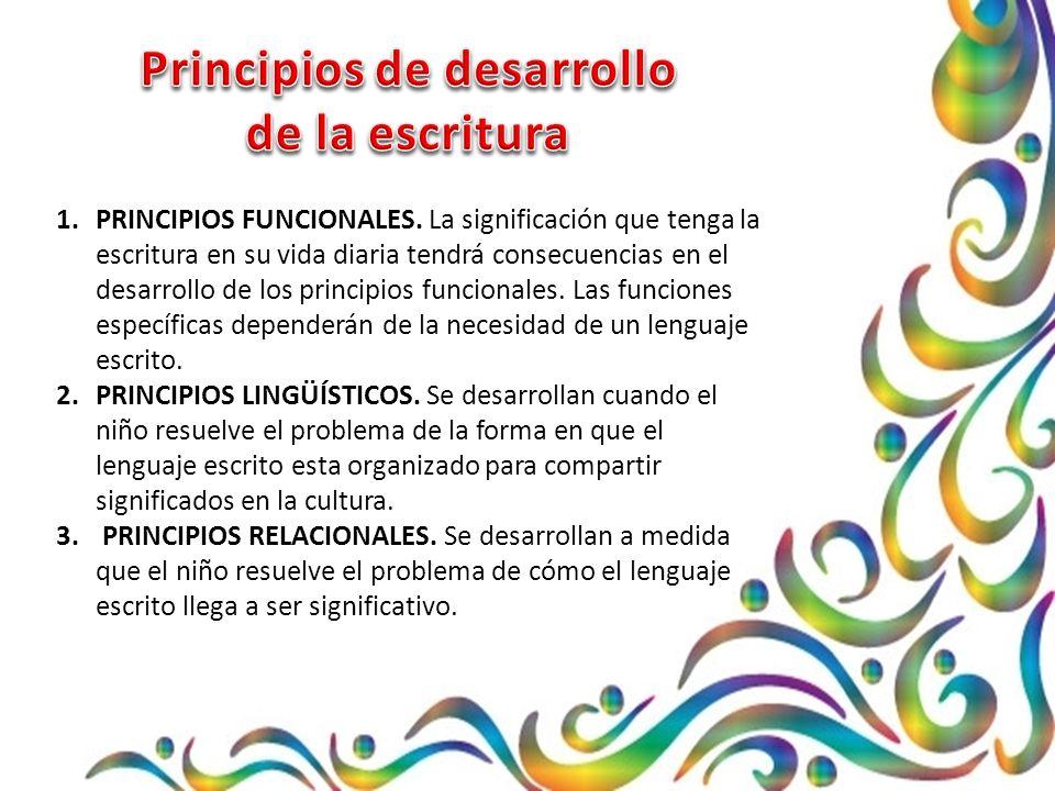 1.PRINCIPIOS FUNCIONALES.